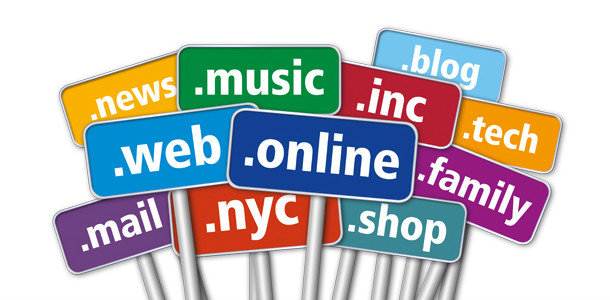 Разнообразие доменных зон